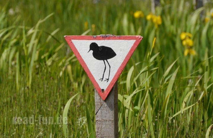 Gefahrenschild außere Hebriden - Bodenbrueter