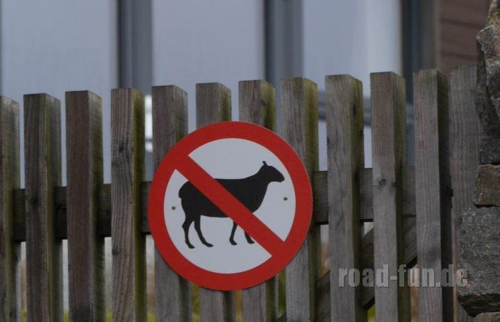 Verbotsschild outer Hebrides - keine Schafe