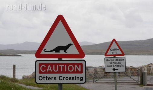 Gefahrenschild außere Hebriden - Otter Crossing