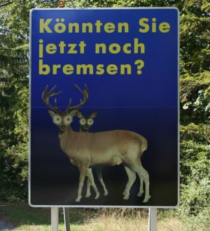 Verkehrserziehung in Oesterreich
